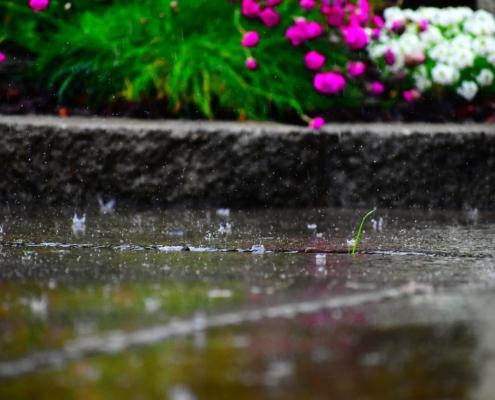 regen tuin